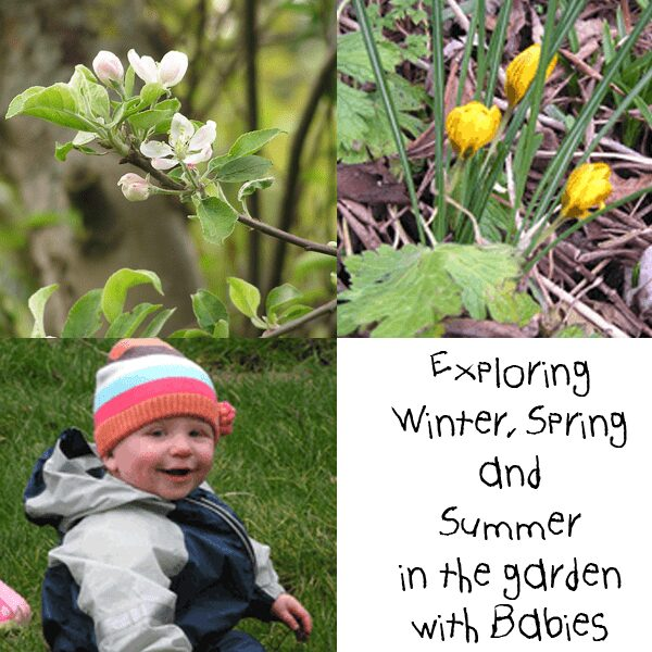 Exploring the garden with babies throughout the seasons