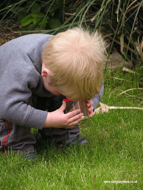 Fun Nature Study activity for families and classes to look at the minibeasts that can be found in different microhabitats.