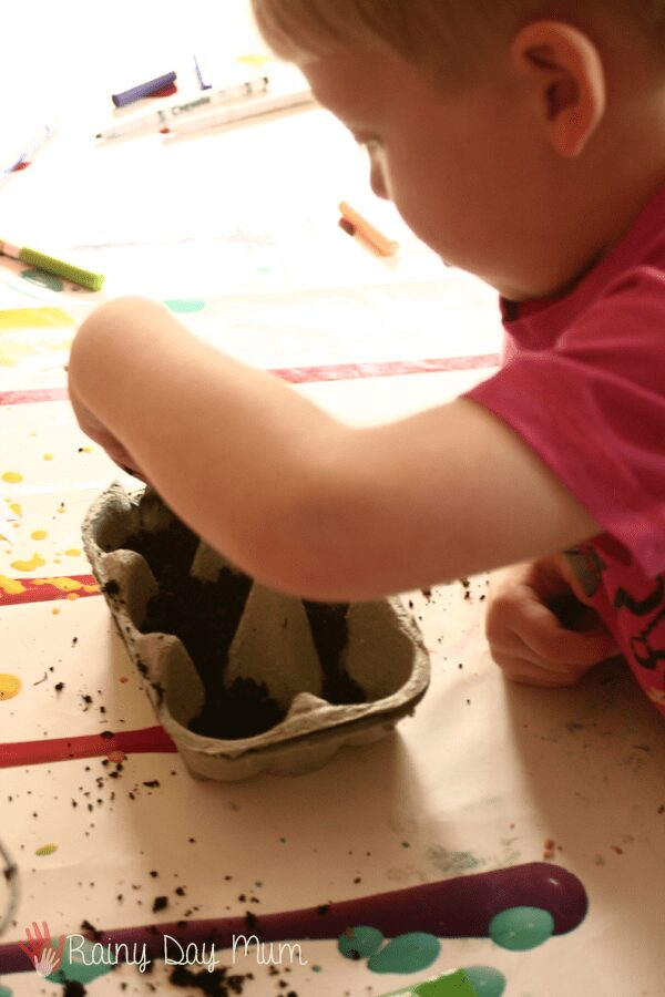 child filling egg cartons up with soil
