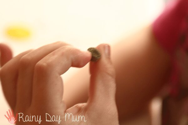 child holding a pea seed ready to plant