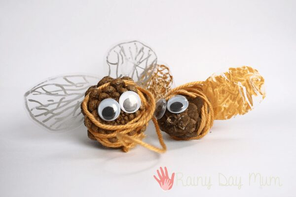 pine cone bumble bees