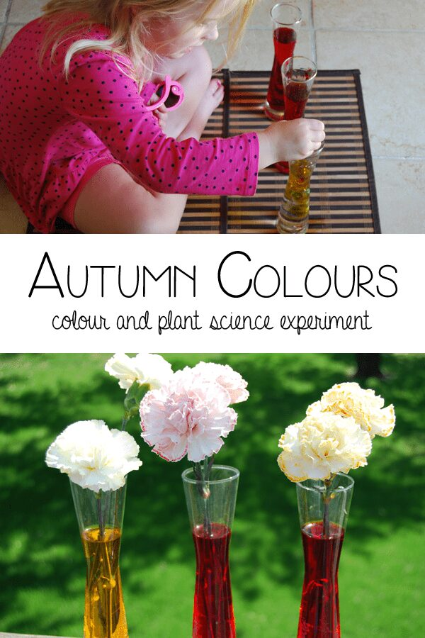 Autumn Colours - colour and plant science hands on learning for preschoolers