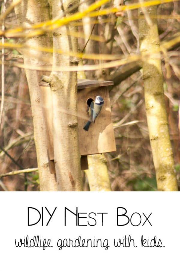 DIY Nest Box - wildlife gardening with kids