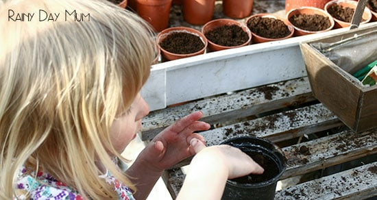 toddler planting seeds in a greenhouse