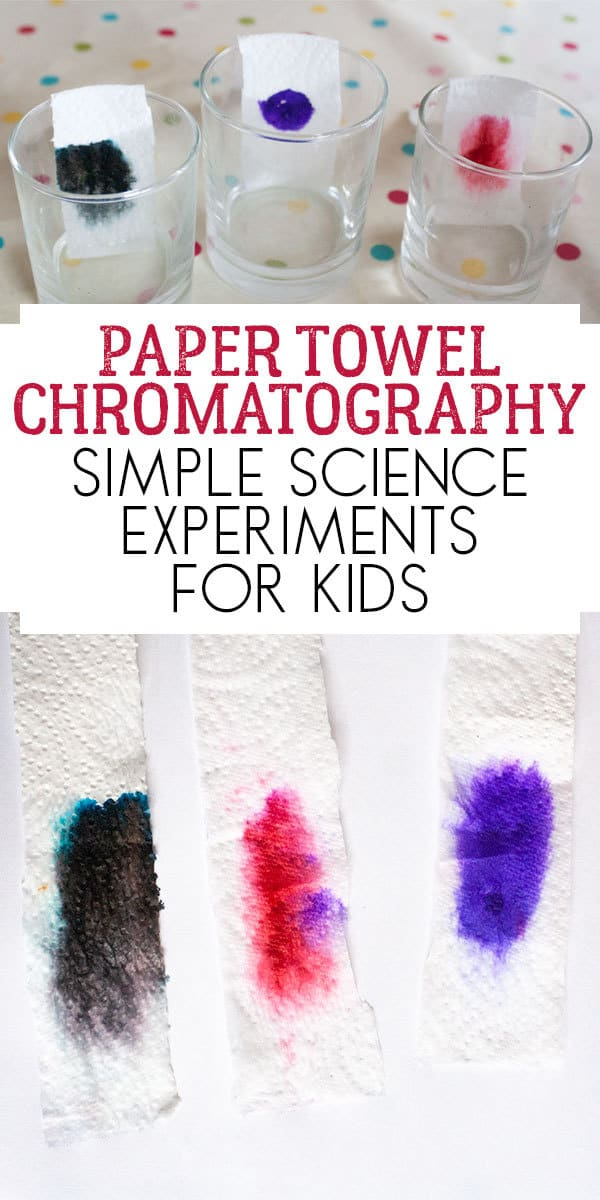 Simple Paper Towel Chromatography Experiment to do with kids to explore what colours make up black ink.
