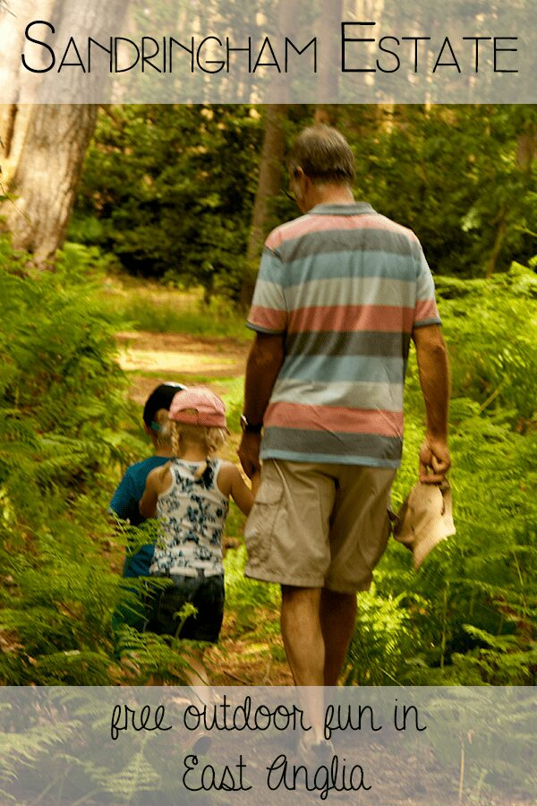 Sandringham Estate - free outdoor fun for all of the family in the woods surrounding the Queen's estate in Norfolk in the United Kingdom. Ideal for family outdoor adventures year round