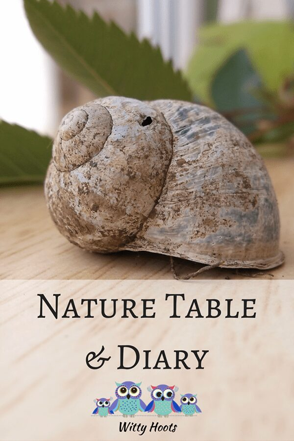 Nature Table and Journal