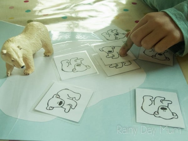 Hands-on Math activity for early years with the theme of Tundra or Polar Animals, sharing and halving polar bear cubs