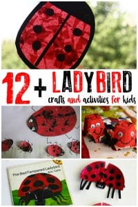 Ladybird activities and crafts for kids to create and learn with ideal for spring and summer fun that can be done at home or in the classroom.