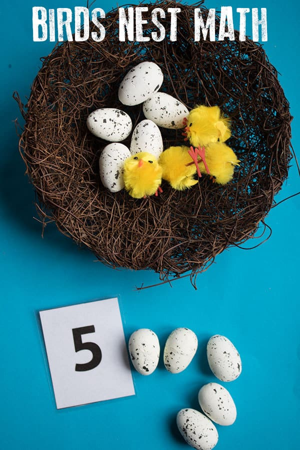 Birds Nest Math Activities – Counting, Addition and Subtraction
