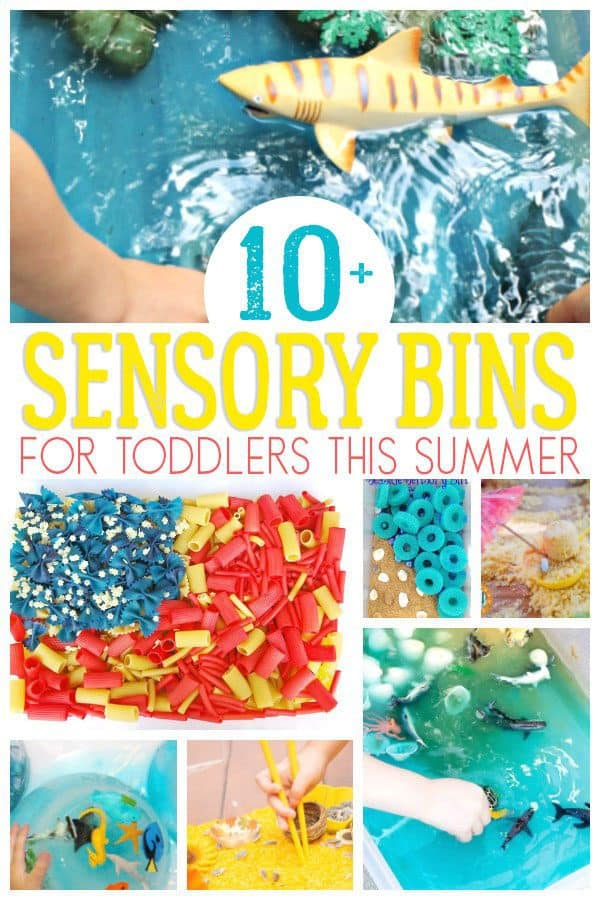 collage of sensory bins for summer fun with toddlers