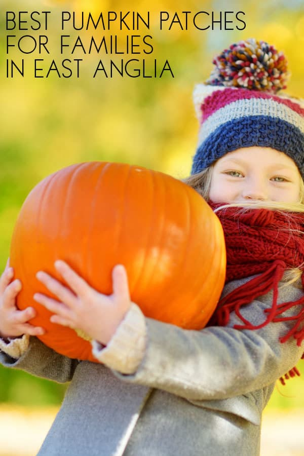 Where to Pick Pumpkins In East Anglia