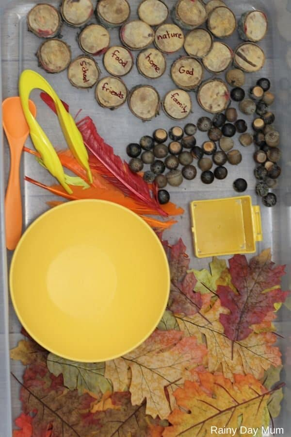 Simple to set up Sensory Bin for thanksgiving with natural and manmade elements
