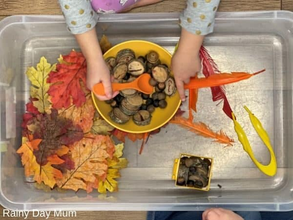 Making Thanksgiving pretend soup in a sensory bin set up for toddlers and preschoolers to play together
