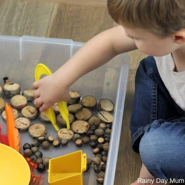 Using large tweezers within a sensory bin set up for fall and Thanksgiving