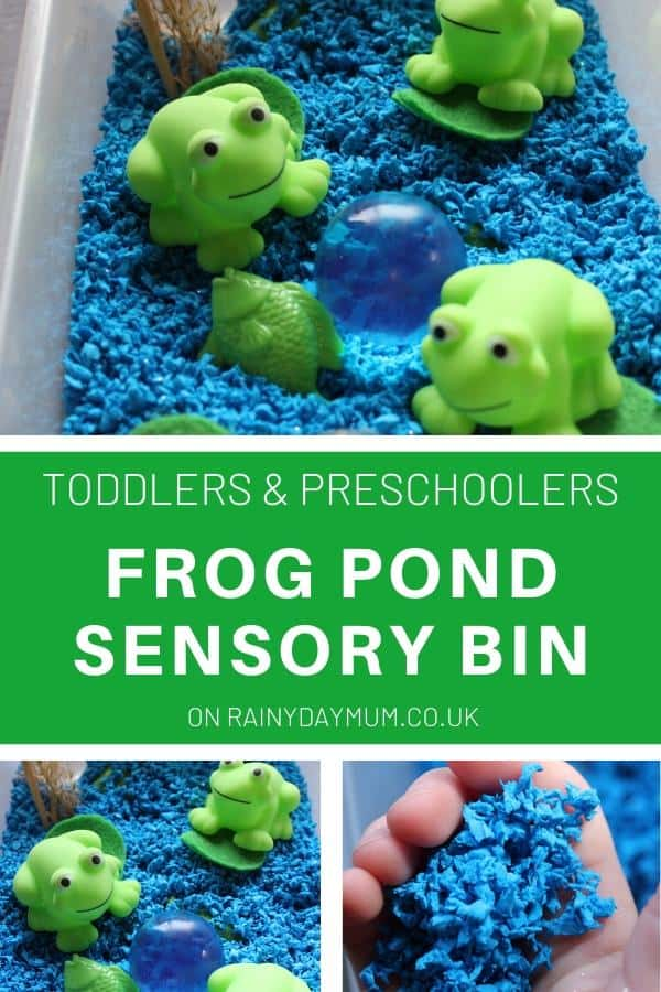Toddler and Preschool Frog Pond Sensory Bin