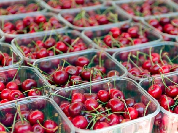 ripe red cherries in their plastic punnets at the farmers market in may