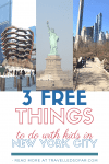Top 3 FREE things to do with kids in NYC