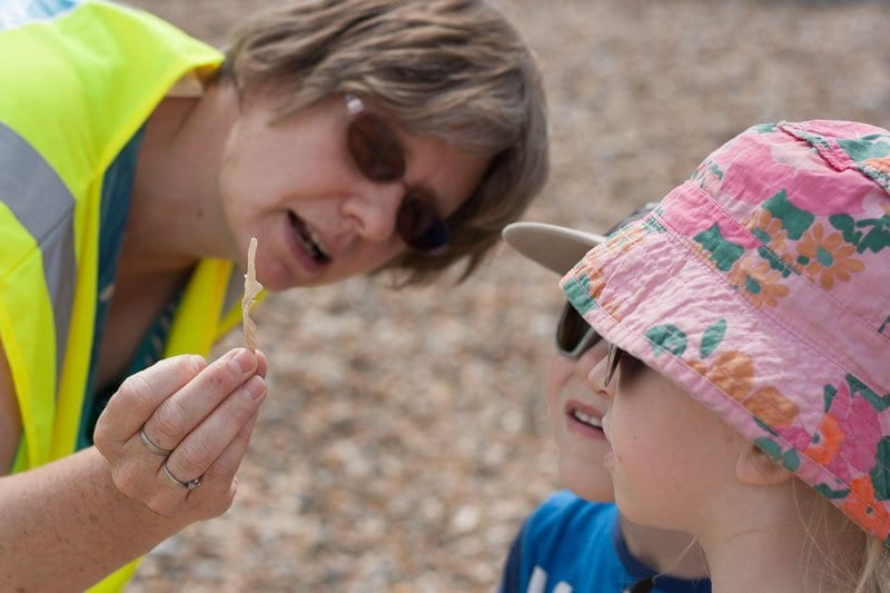 beach combing with Kate from Beach Bonkers a fun way to explore Felixstowe Beach